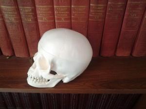 biblioteca maldita