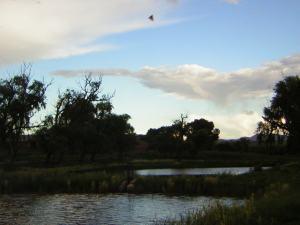El estanque de el rancho El Refugio, en Temósachi, Chihuahua.